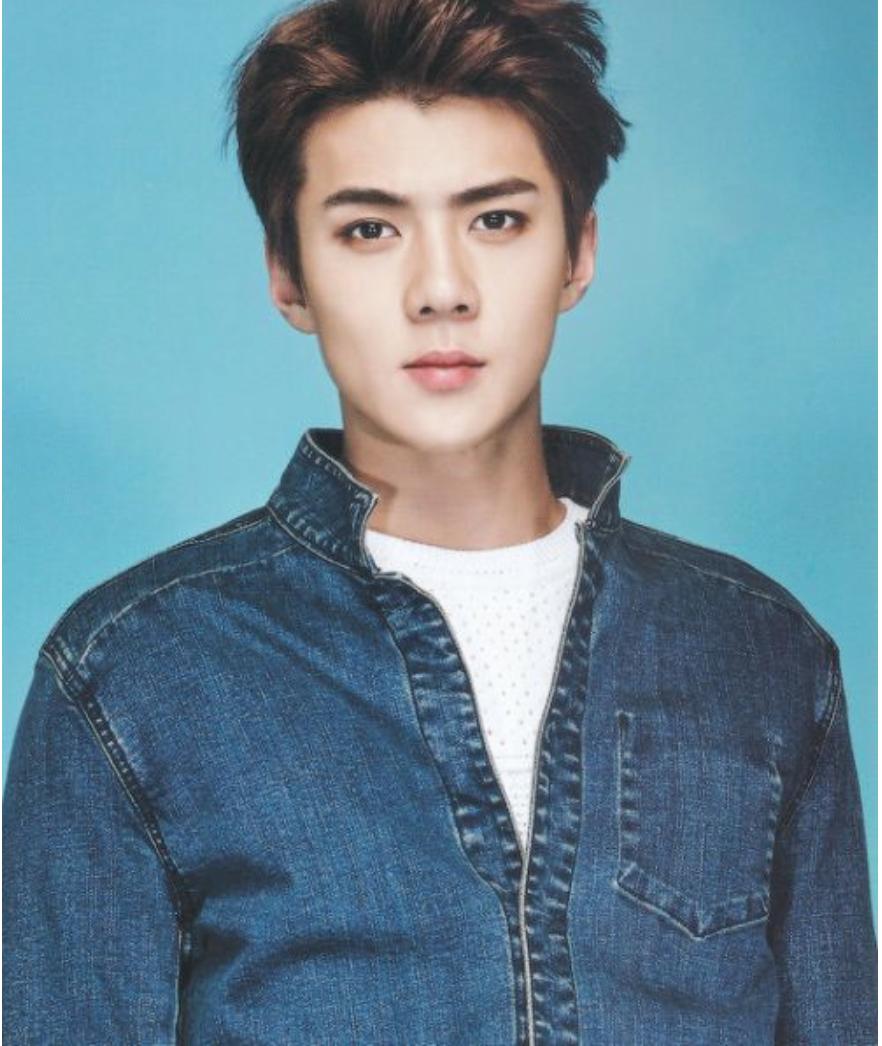 100 Facts sur Oh Se-Hun [EXO] - Fact #1 - Wattpad